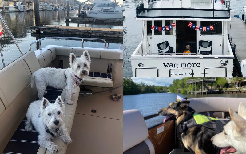 Dockwa Boater Blog  Boat Names 21 (11)