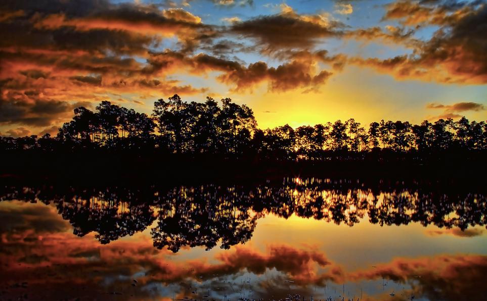 Florida_Everglades_sunset.png