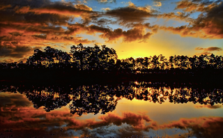 Florida_Everglades_sunset.png