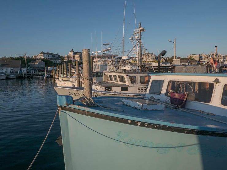 Ballard's Marina
