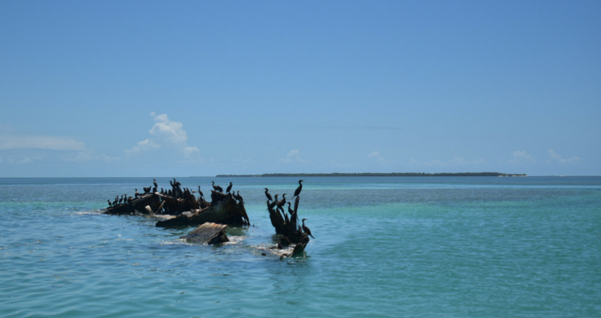 Key_West_wreckage.png