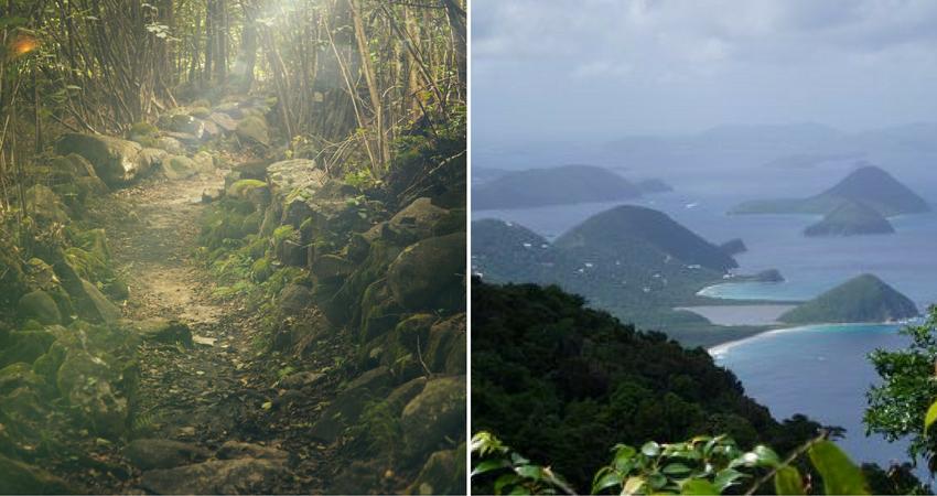Tortola - Sage Mountain.png