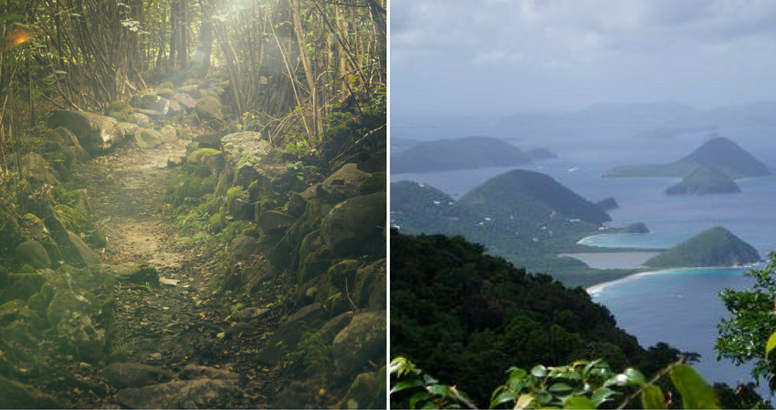 Tortola - Sage Mountain.png