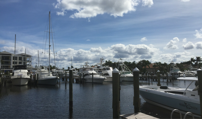 The Bluffs Marina Florida
