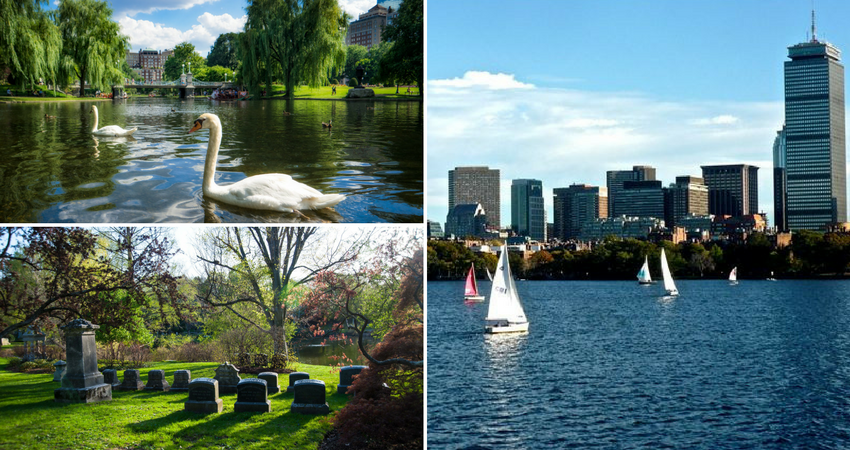 constitution_marina_boston_garden.png