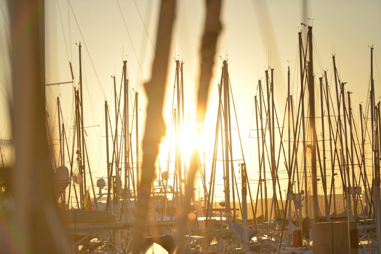 masts_thanksgiving_marina