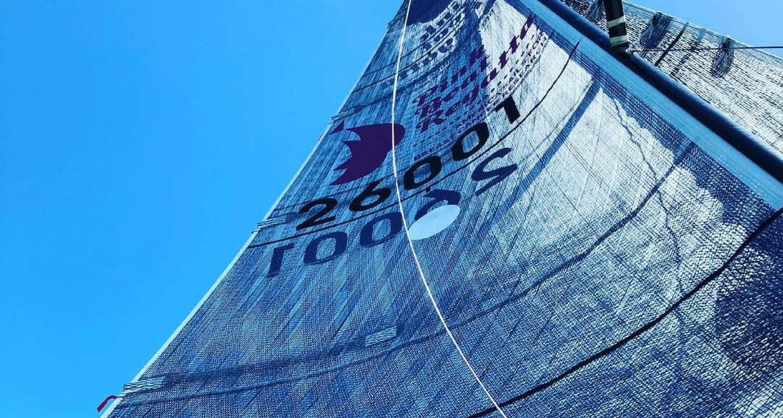 pink boat regatta -tech sail
