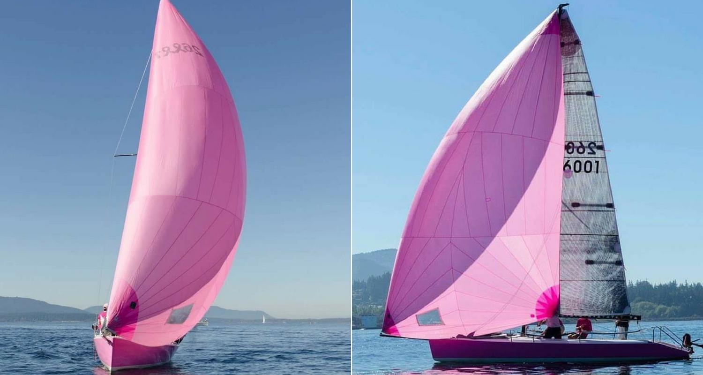 pink boat regatta - spinnaker