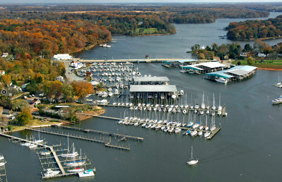 sassafra_harbor_marina_georgetown_maryland_clean_marina